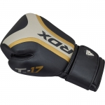 rdx_t17_aura_boxing_gloves_golden_8_.jpg